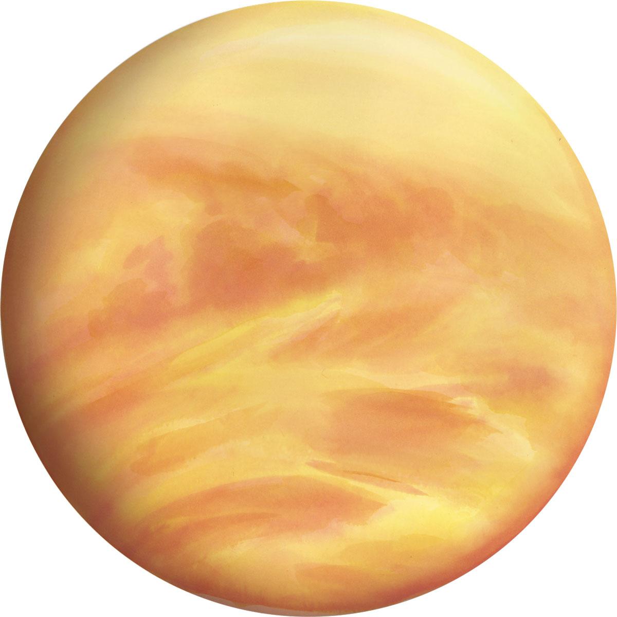 <p>Venus</p>