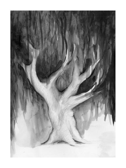 <p>Tree</p>
